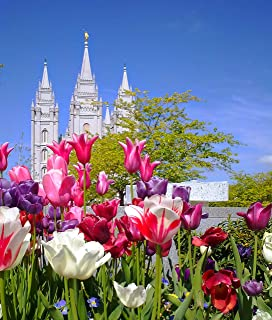 5D Diamond Painting Kits Drill Embroidery DIY Crystals Rhinestone Painting Pasted Paint by Number Kits Cross Stitch (Salt Lake City LDS Temple)