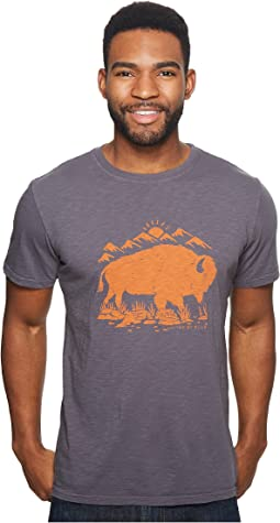 United By Blue Mountain Bison