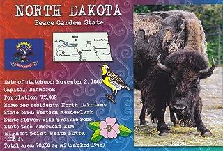 STATES3NDA NORTH DAKOTA - BISON - Peace Garden State - - A NORTH DAKOTA POSTCARD from Hibiscus Express
