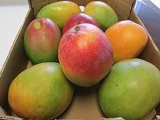 Fresh Mango Fruit Mangoes (9 Pounds)