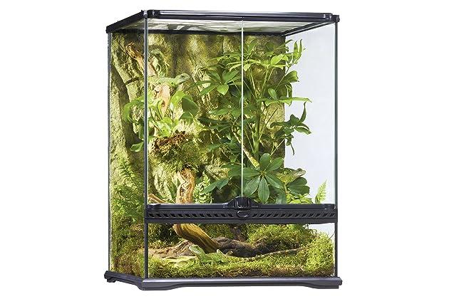 Best Terrariums For Reptiles Amazon Com