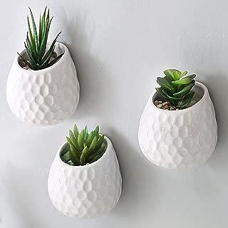 Best flower pot on wall Reviews