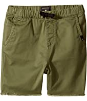 Quiksilver Kids - Fun Days Shorts (Big Kids)