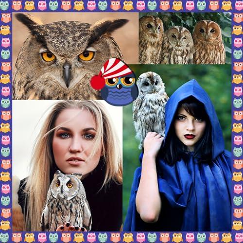 Colagem de fotografias de corujas