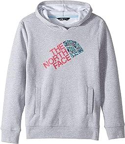 The North Face Kids Logowear Pullover Hoodie (Little Kids/Big Kids)