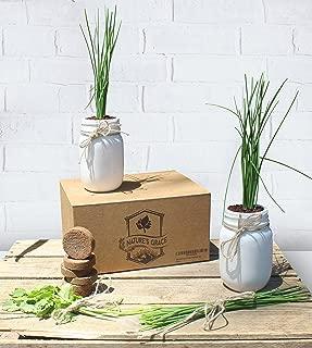 Ceramic Mason Jar Indoor Windowsill Herb Garden Planter Starter Kit | Certified Organic Non GMO Coconut Peat Coir | Culinary Italian Basil Cilantro Thyme Parsley Chive Seeds | Unique Kitchen Gift