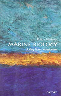 Best ich marine fish Reviews
