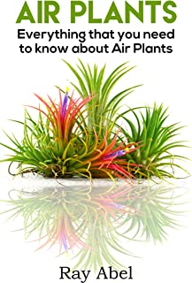 Air Plants: Everything that you need to know about Air Plants in a single book (air plants, air plant care, terrarium, air plant book)
