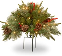 National Tree 18 Inch Feel Real Colonial Urn Filler with Cones, Red Berries, Tripod Stake and 35 Warm White Battery Operat...