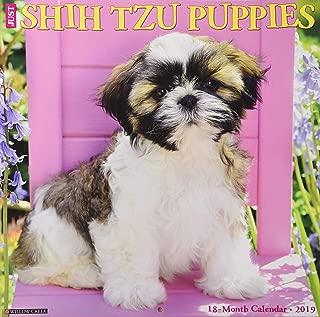 Just Shih Tzu Puppies 2019 Wall Calendar (Dog Breed Calendar)