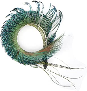 corsage with feathers