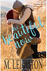 The Beautiful Now Kindle Edition