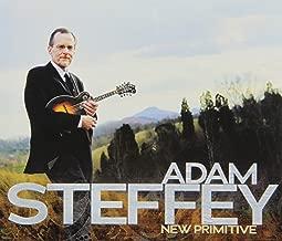 adam steffey new primitive