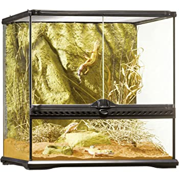 Exo Terra Glass Natural Terrarium Kit, for Reptiles and Amphibians, Small Wide, 18 x 18 x 18 inches, PT2605A1