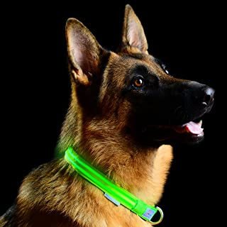 Pet Industries Metal Buckle LED Dog Collar, USB Rechargeable, Available in 7 Colors & 4 Sizes