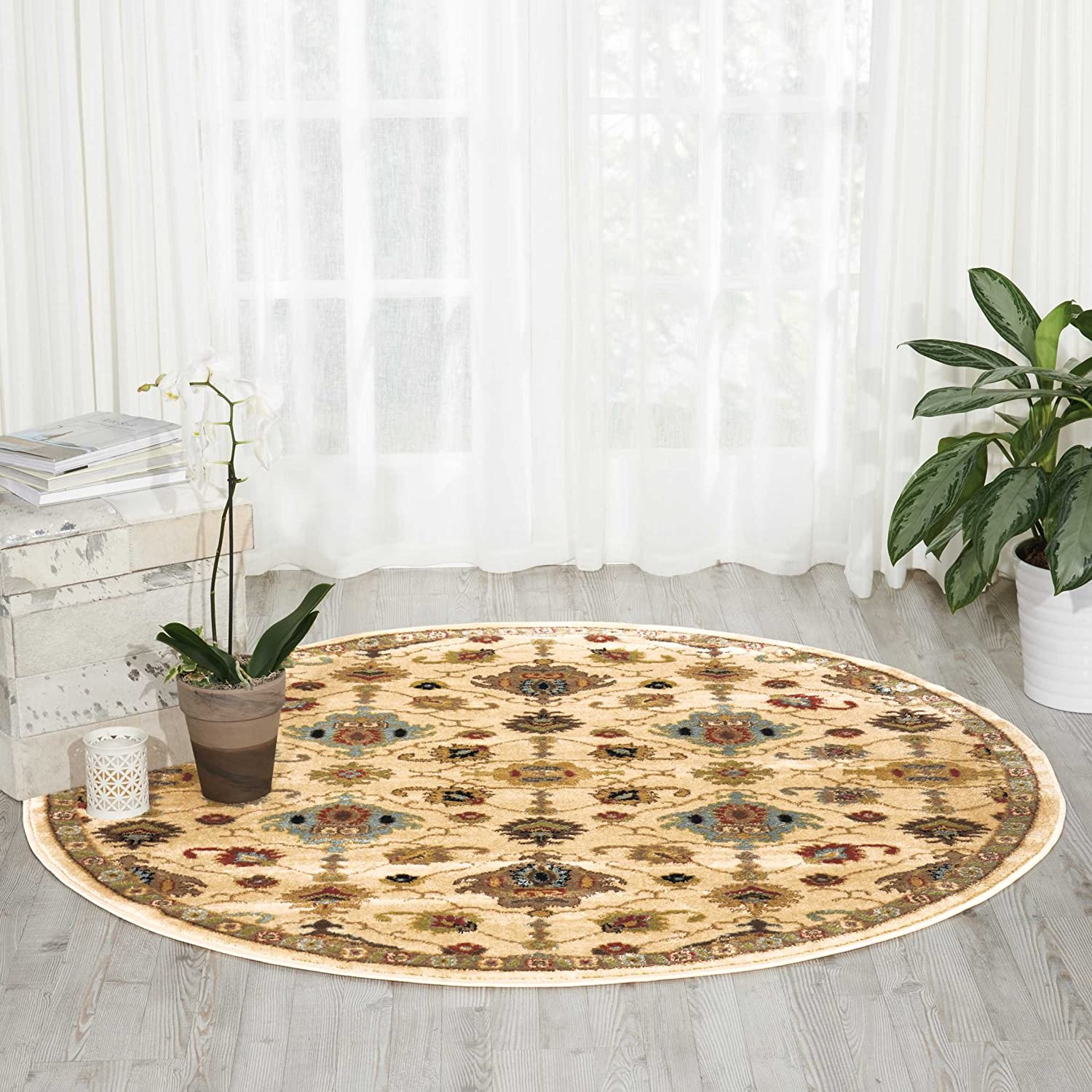 Nourison Delano Traditional Oriental It is very popular Persian Soldering Rug Ivory 5'3 Area