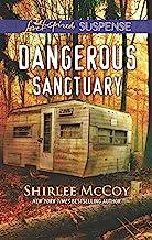 Dangerous Sanctuary (FBI: Special Crimes Unit Book 3)
