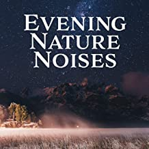 Evening Nature Noises: Best Nature Sounds with Piano Melodies for Total Relax, Therapy Music, Stress Relief, Peace & Harmony, Perfect Nights with New Age Songs