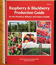 Best blackberry production guide Reviews