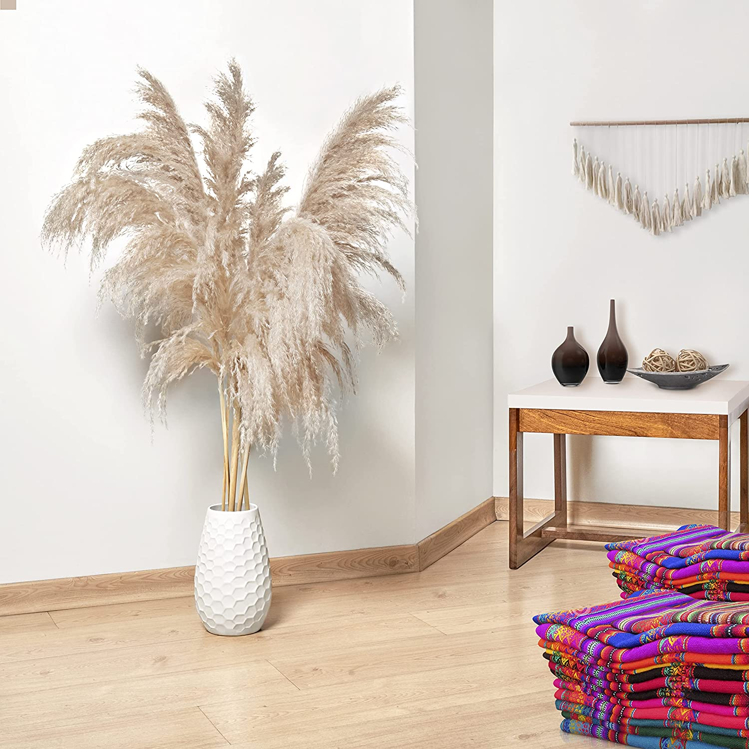Tierra Alegría Pampas Grass Ranking TOP3 Large Fluffy South from store Am Stems 5
