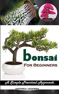 Best house plants simple bonsai tree care Reviews