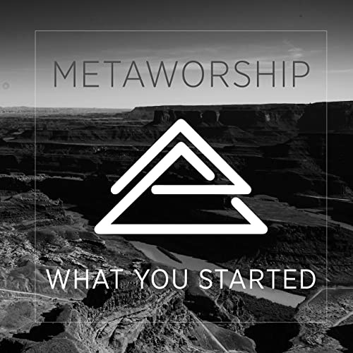 MetaWorship - What You Started (2019)