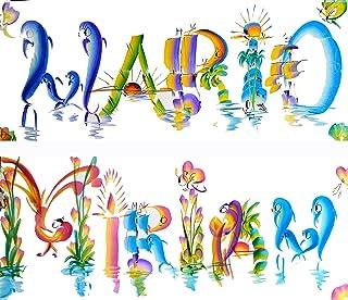 Nombres decorativos Letra Creativa Arcoiris Placa Personalizada 48 cm 20 cm Regalo Cumpleaños Letras de pincel