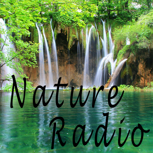 Free Radio Ambient And Nature