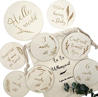 Wooden Milestone Discs, Baby Monthly Milestone, Photo Prop Gift Set, 14 Double Sided Engraved Cards with Drawstring Bag, P...