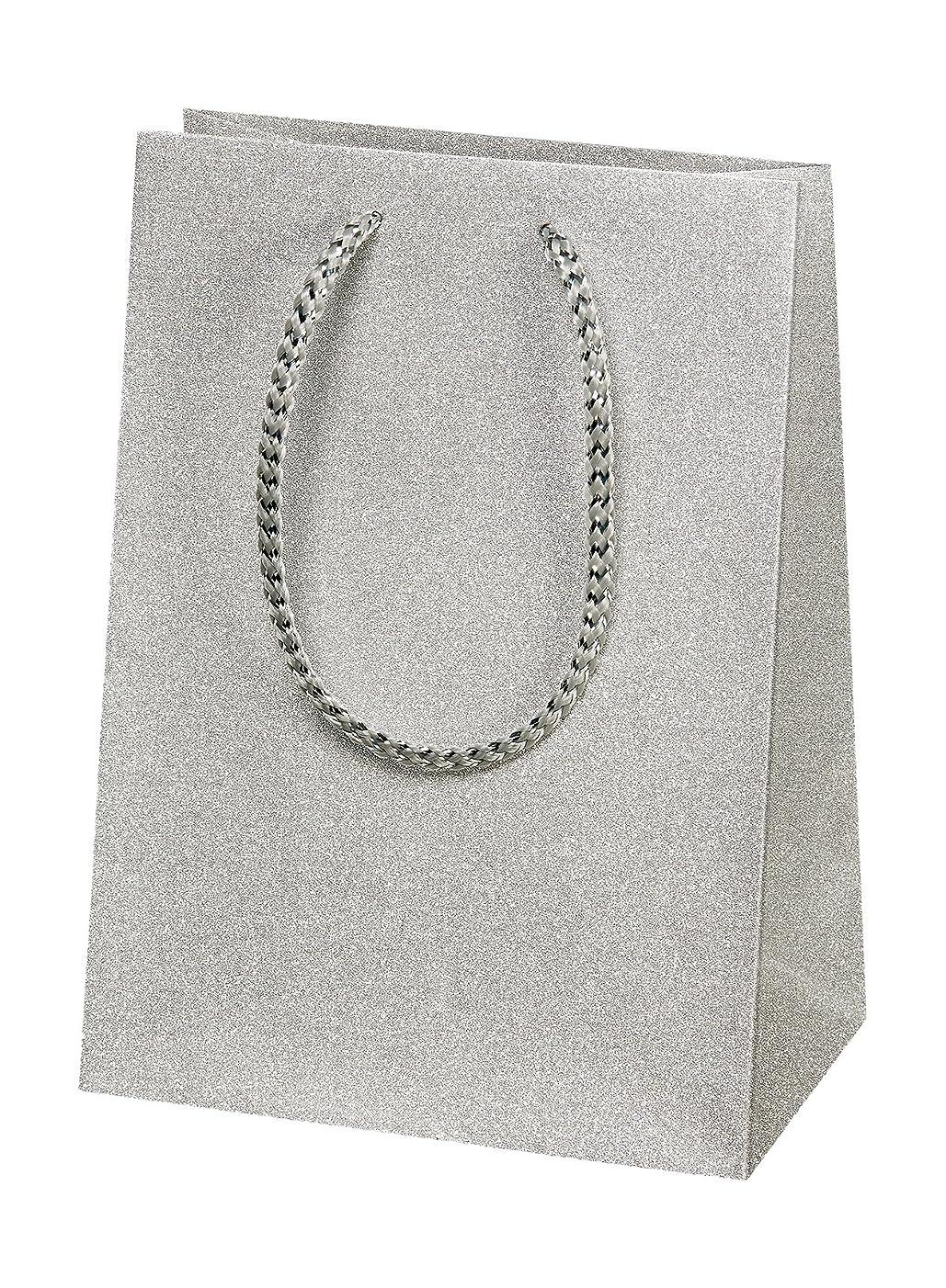 Susy Card 11428349?Gift Bag 16?x 22?x 10?cm Glitter Silver