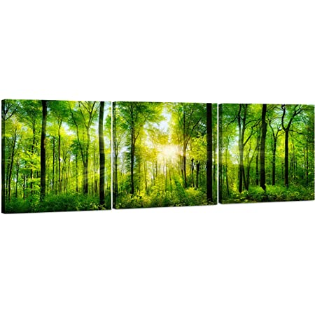 Forest Canvas Wall Art Decor 3 Panel Tree Filled Print Photograph Large Decorative Painting Wall Art For Living Room Kitchen Bedroom Office Modern Home Decor Gift For Men Women