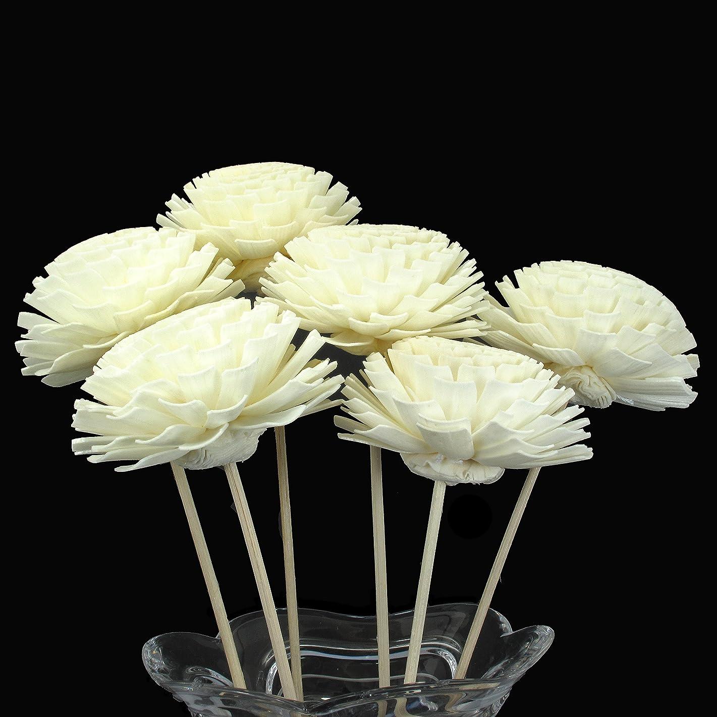グローブレオナルドダトマトSola木製アロマオイルディフューザーZinnia花with Rattan Reed Diffuser Sticks、6パック