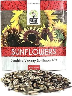 Sunflower Variety Mix 10 Types of Beautiful Sunflowers - Bulk 1 Ounce Packet - Open Pollinated Sunflower Seeds