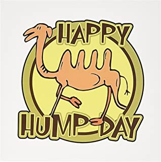 Best hump day camel birthday card Reviews