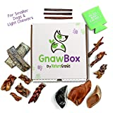 Gnaw Box – Nature Gnaws Dog Chew Treats - Subscription Box: Small Dog GnawBox