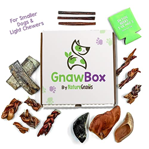 Gnaw Box – Nature Gnaws Dog Chew Treats