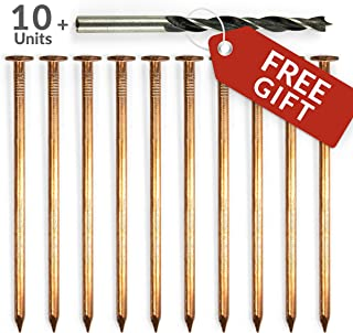 4 inch Copper Nails for Tree Treatment - Fungicides for Plants or Trees Stumps and Roots Killer - Pack of 10 Solid Copper Nail Spikes with Free Drill bit