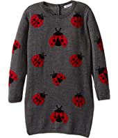 Dolce & Gabbana Kids - Back to School Lady Bug Sweater Dress (Toddler/Little Kids)