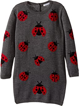 Back to School Lady Bug Sweater Dress (Toddler/Little Kids)