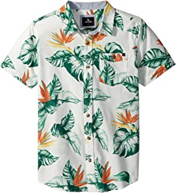 Rip Curl Kids - Sessions Short Sleeve Shirt (Big Kids)