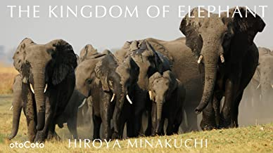 THE KINGDOM OF ELEPHANT (CotoBon)