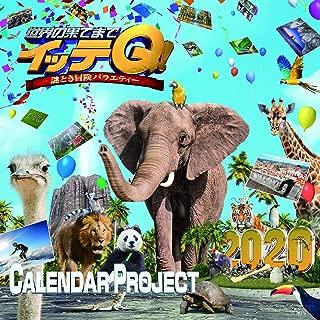 イッテQ! カレンダー2020 卓上タイプ ([カレンダー])