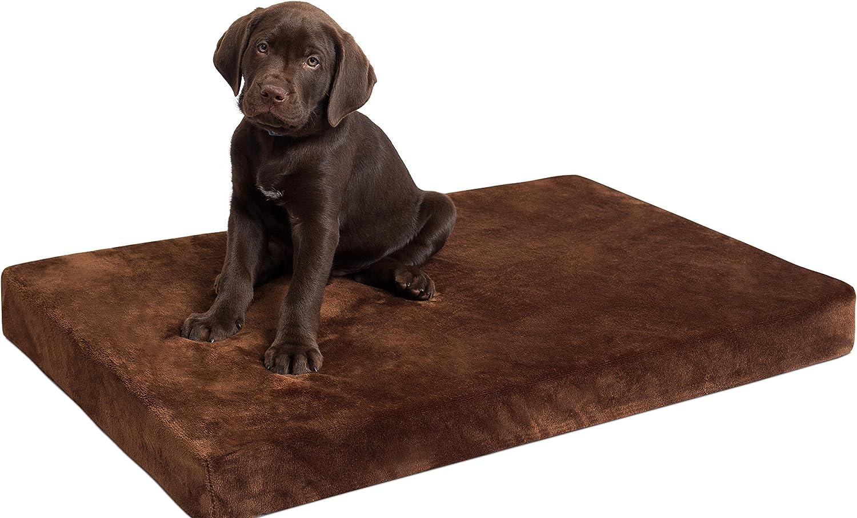 BirdRock Home 3 Inch Premium Memory Foam Dog Bed (34 x 22, Brown)