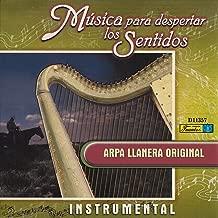 Concierto en la Llanura (Instrumental)