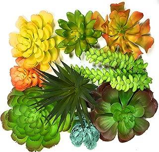 Trunnco 9 Designer Quality Large Faux Succulents Life-Like for Artificial Succulent Plants Arrangement