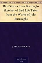 Bird Stories from Burroughs Sketches of Bird Life Taken from the Works of John Burroughs