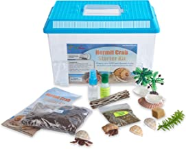 Nature Gift Store LIVE Pet Hermit Crab Complete Starter Kit - SHIPPED WITH 2 Live Crabs