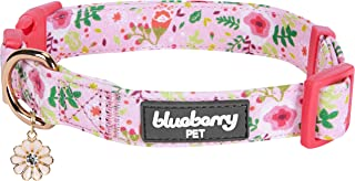 Blueberry Pet 2019 New 6 Patterns Spring Scent Garden Floral Collars for Dogs, Matching Shopping Bag for Pet Lovers