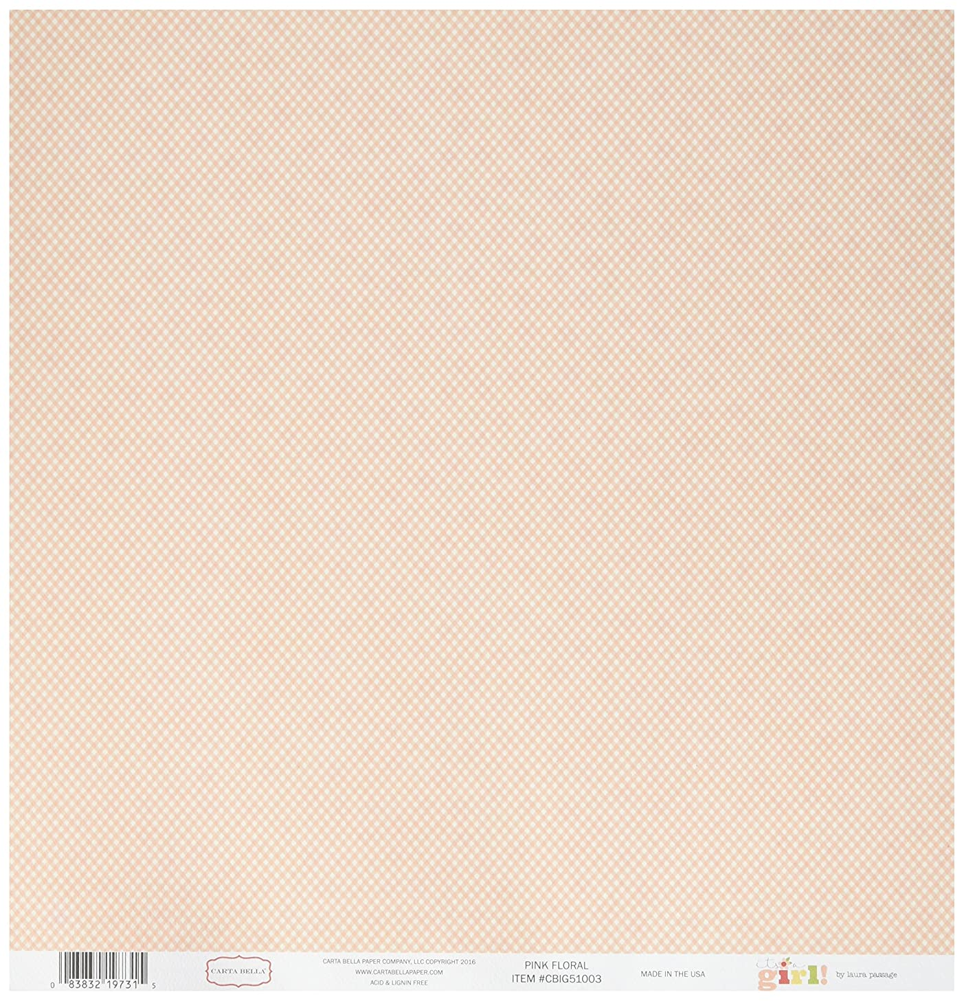 Echo Park Paper CBIG51003 It's A Girl Double-Sided Cardstock (25 Sheets Per Pack), 12
