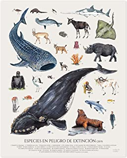 Póster de animales ilustrado en peligro de extinción. Poster vintage 40x50, Acuarela, Póster wildlife, Póster zoología, lá...
